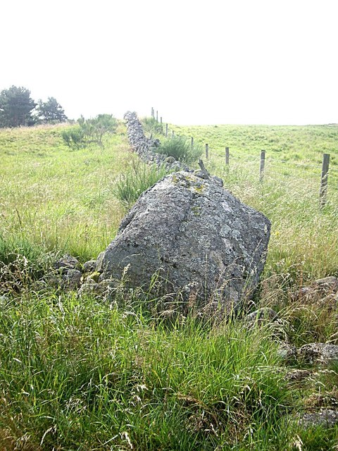 Glacial boulder in a dry stone wall
