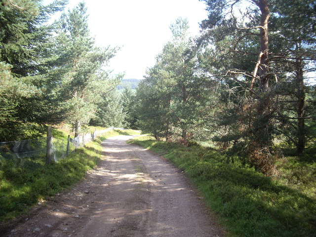 Downhill towards Dalbreck