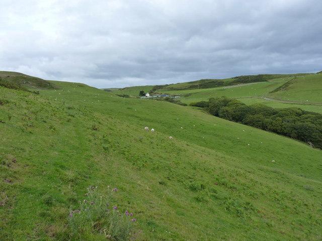 Trefeddian Farm