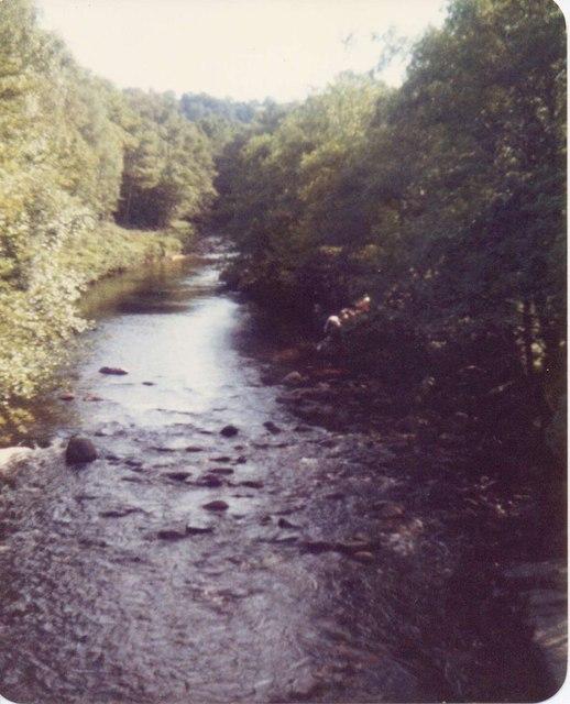 River at Dartmeet