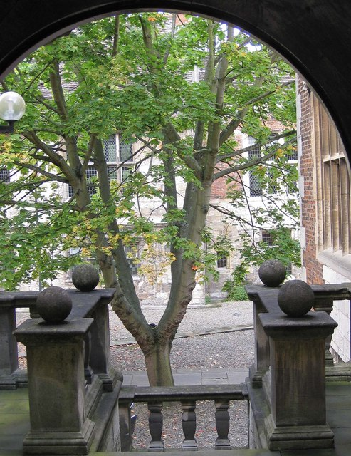 The courtyard, King's Manor