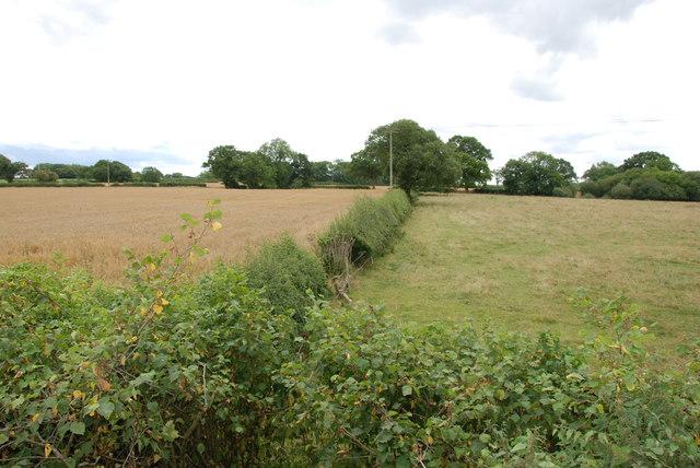 Across Fields from the B5405