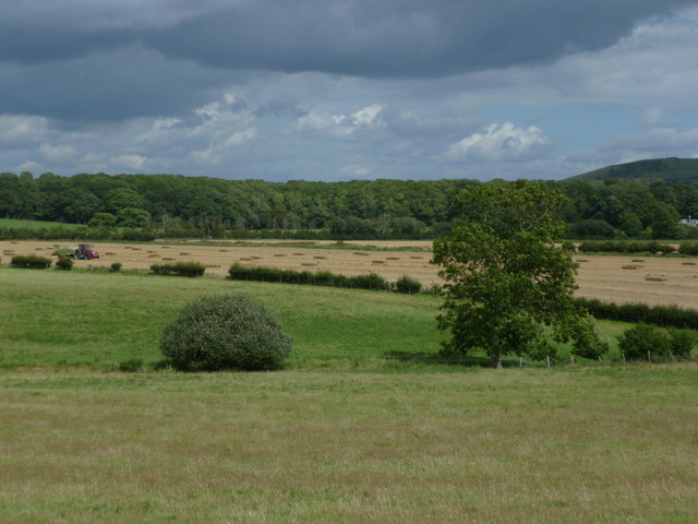Fields between Poynings and Fulking