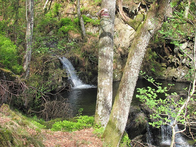 Waterfall, Ledard Burn
