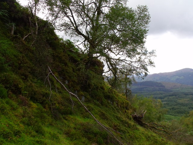 Steep valley side in course of tributary to Allt Crioch in Loch Ard Forest