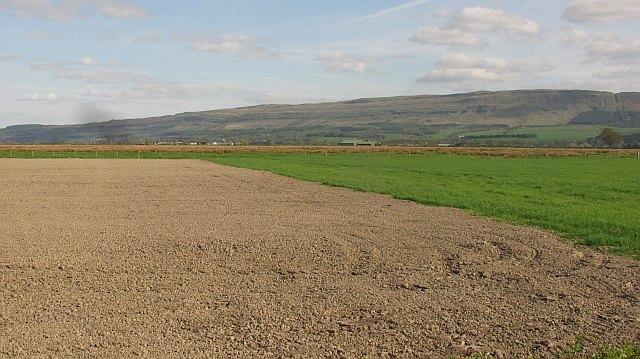 Carse land near Thornhill