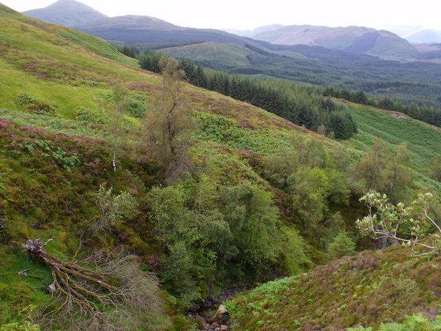 View across burn course north of Beinn Bhreac near Aberfeldy