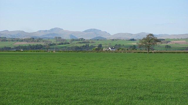Farmland, Flanders Moss