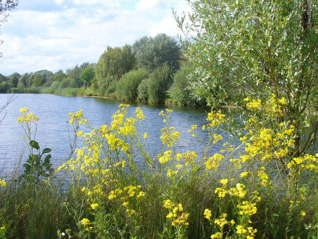 Pond at Dorney Lake