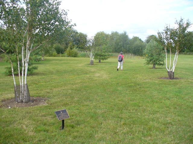Commemorative trees, Dorney Lake