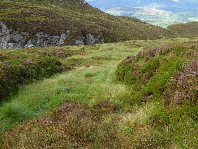Wet seep into Allt Crioch in Loch Ard Forest