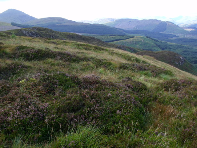 Looking across slope dissected by Allt Crioch in Loch Ard Forest