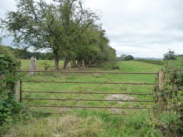 Gated entrance to long narrow field
