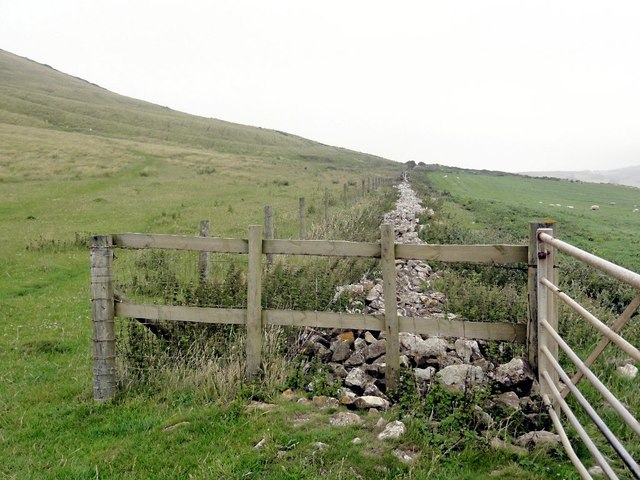 Field Boundary below Tyneham Cap