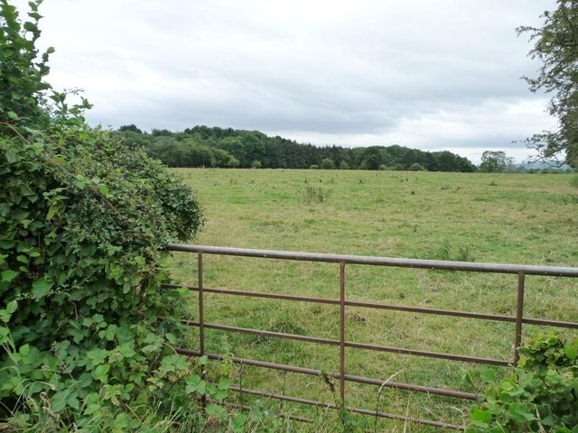 Half-blocked gate into pasture field