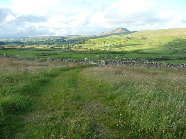 Track to a field gate, Swarth Moor, Stainforth
