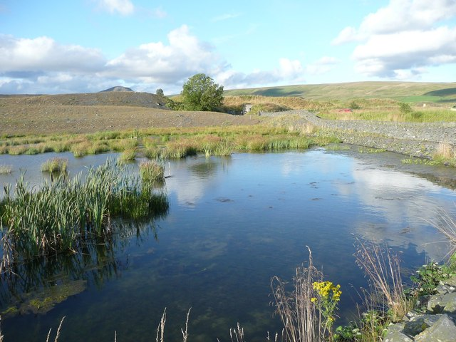 Pond in the Dry Rigg Quarry site