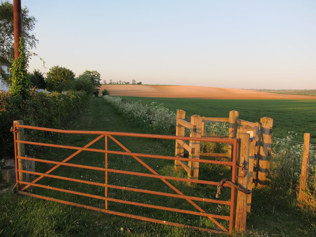 Footpath to Bygrave