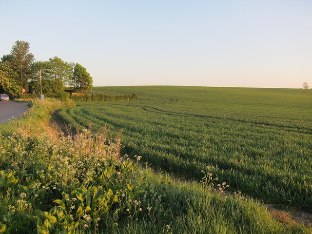 Farmland by Ashwell Road