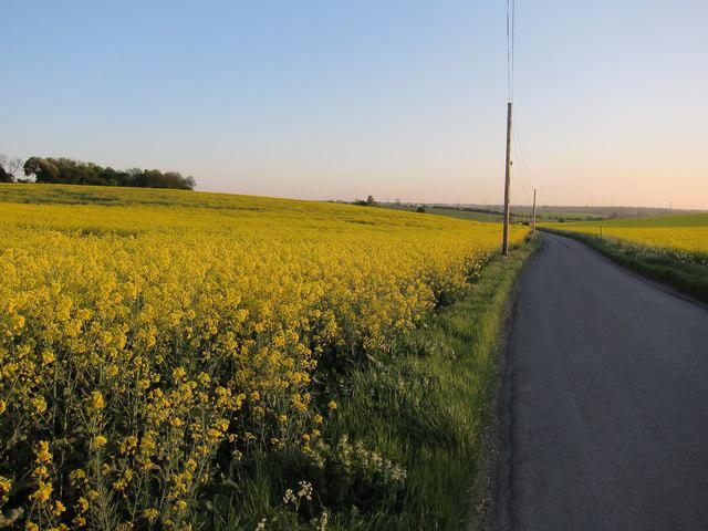 Ashwell Road