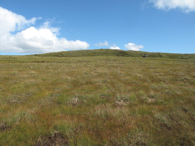 Blanket bog in the Glen Golly Catchment