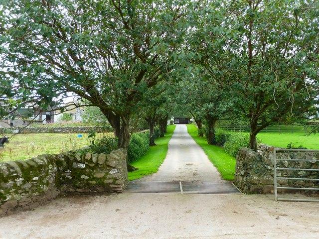 Culscadden Farm