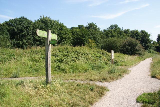 Footpath junction near Cheam