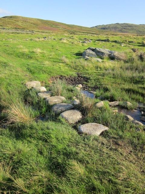 Cerrig camu / Stepping stones