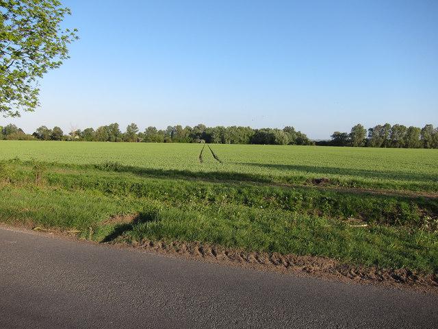 Farmland off Flecks Lane