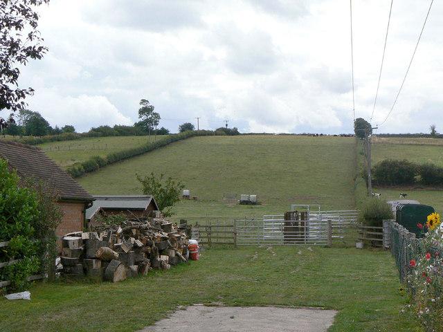 Fields off Bonner Lane