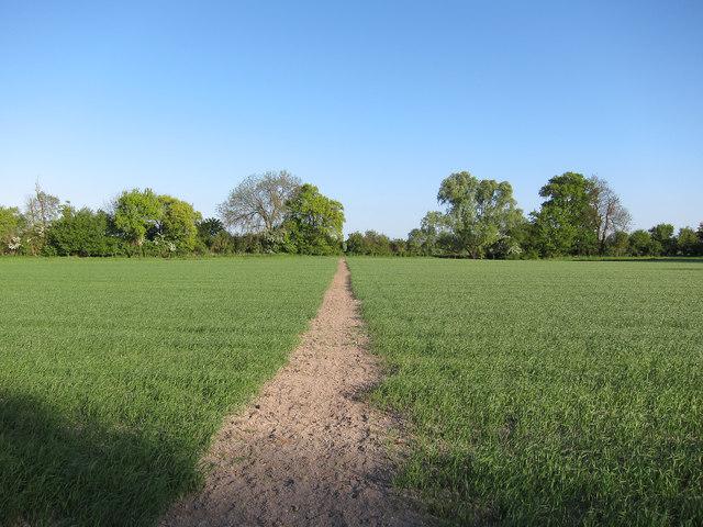 Footpath from Down Hall Farm