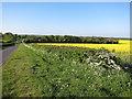 TL3043 : Abington Road by Hugh Venables