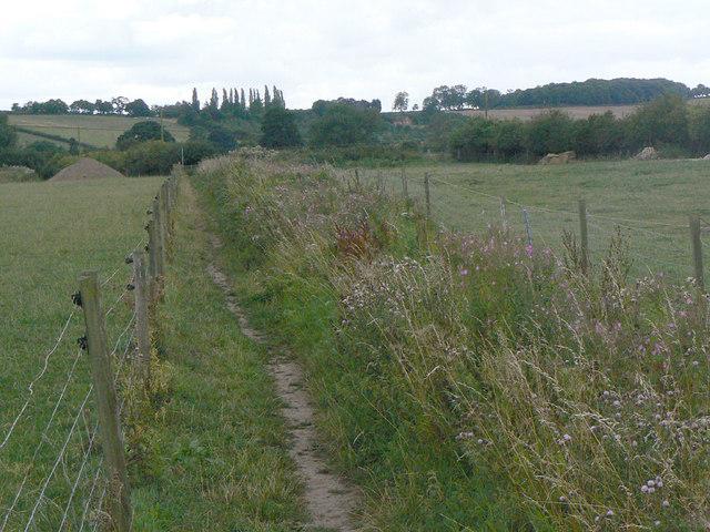 Footpath near Calverton