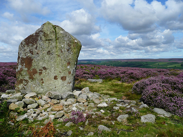 Standing Stone, Ainthorpe Rigg