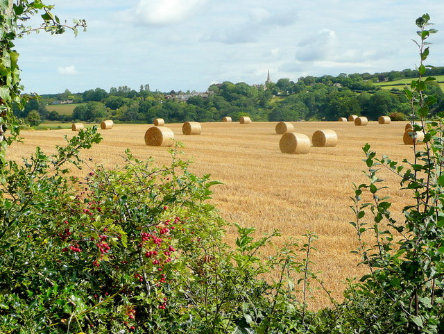 Transient summer view to Linton church