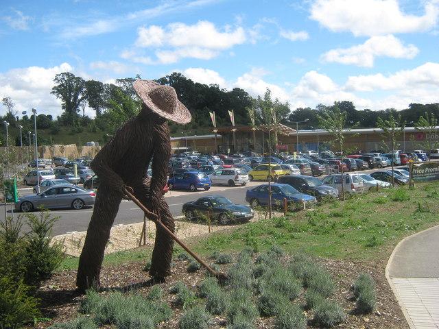 Cane Gardener, Ashford