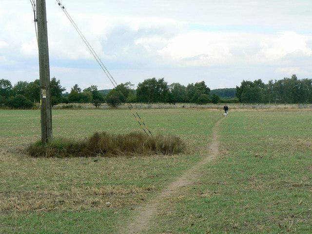 Field footpath near Calverton