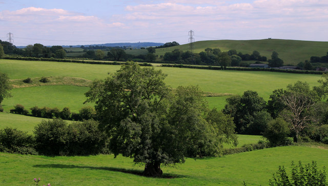 2011 : South of east from Whitstone Hill
