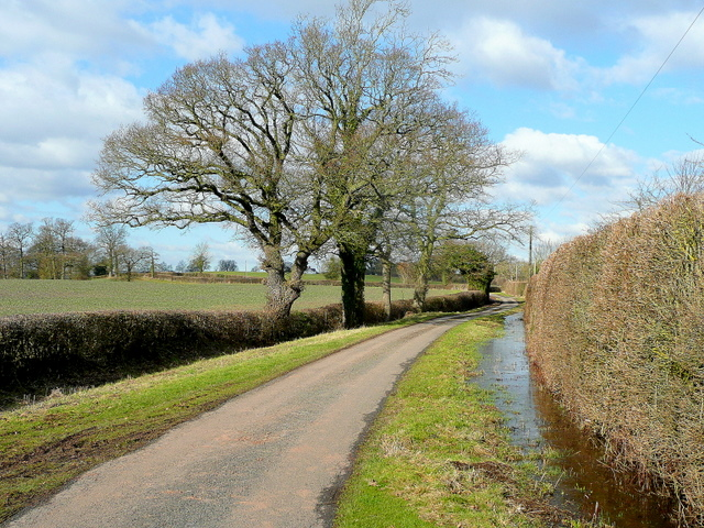 Lane near Knight's Green
