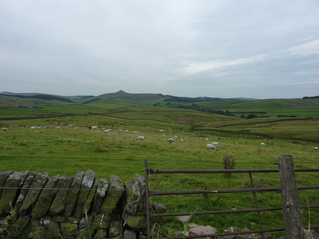 View south from Fieldhead