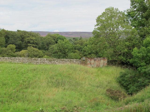The valley of Allerton Burn near Greenhead Farm