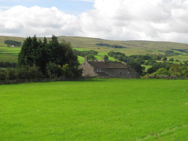 Weardale near Greenfoot