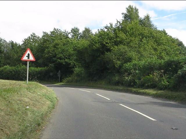 A4113 at Billings Wood