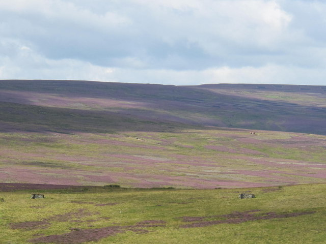 Moorland below Weather Hill