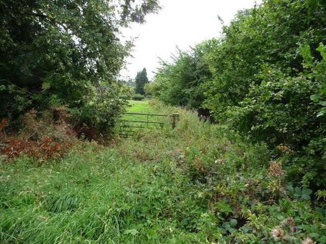 Vestigial gated path to Henley Farm