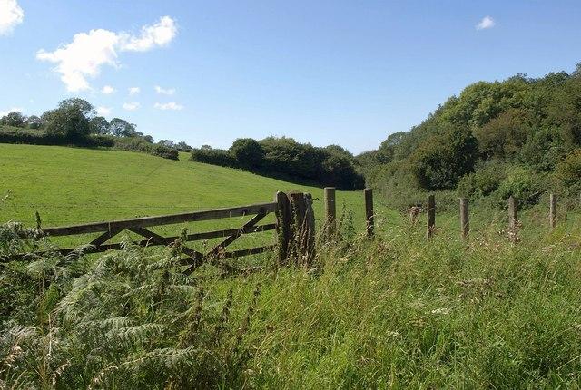 Meadow near Ellick House