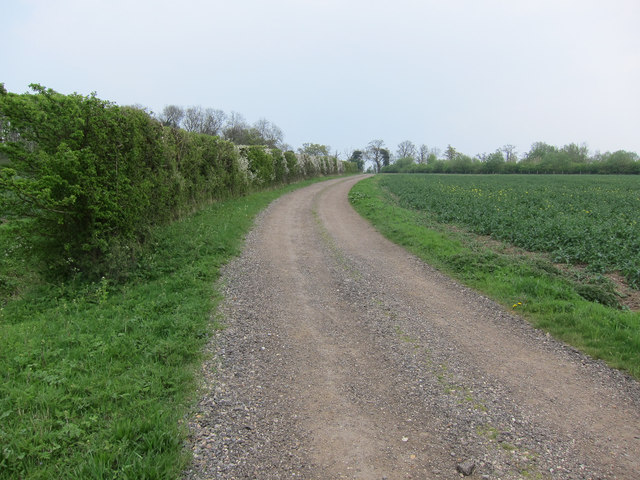 Footpath towards Hare Wood