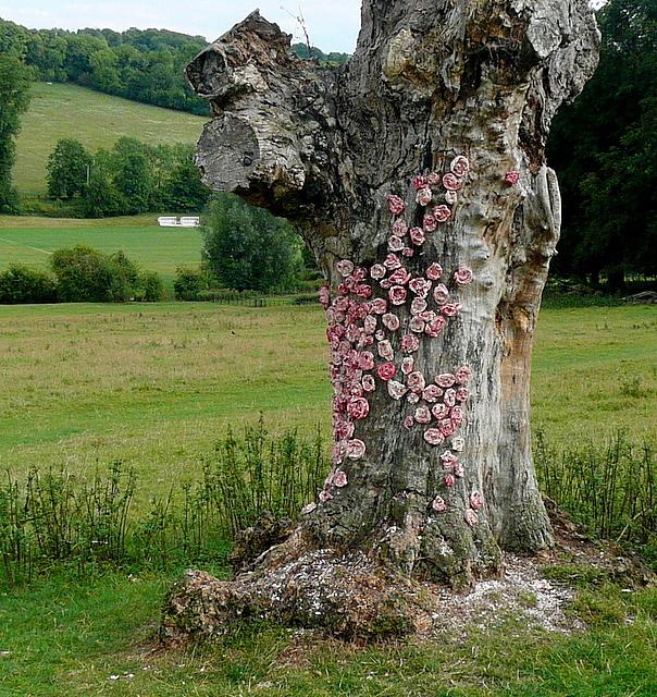 Art at Hughenden Park (10)
