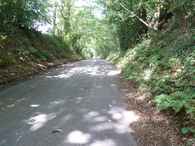 Hammingden Lane by Lucasland Shaw