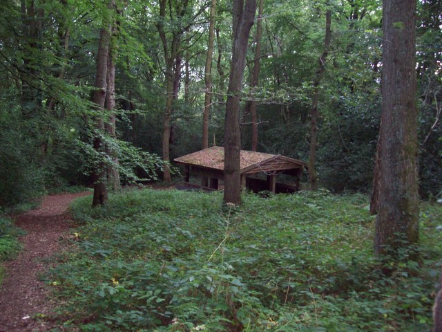 Wooden Shelter in Glen Howe Wood
